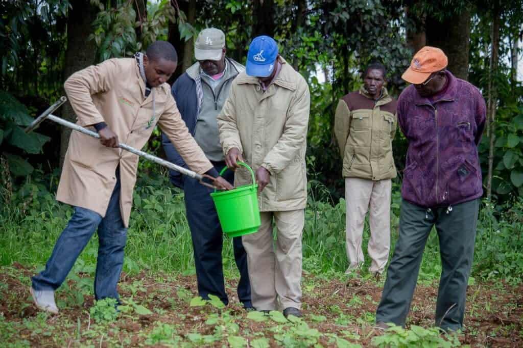 successful onion farmers in Kenya