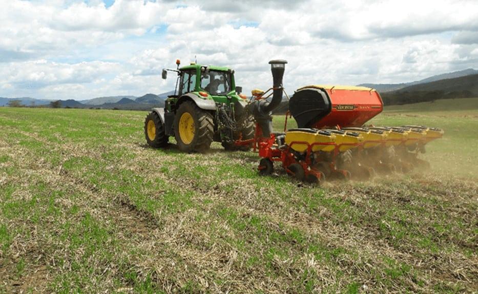 Pioneer Kenya seed company Pannar maize seed varieties