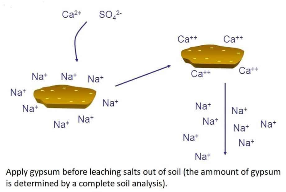 ECe soil salinity