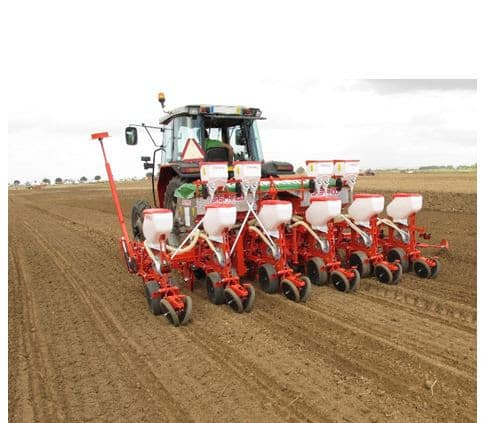 dry planting maize wheat barley